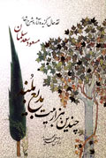 چندین هزار بیت بدیع بلند: نقد حال، گزیده آثار و شرح اشعار مسعود سعد سلمان