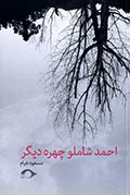 'احمد